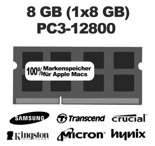8GB (1x8GB) PC12800 1600MHz Arbeitsspeicher Ram